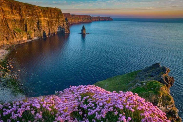 爱尔兰留学优势