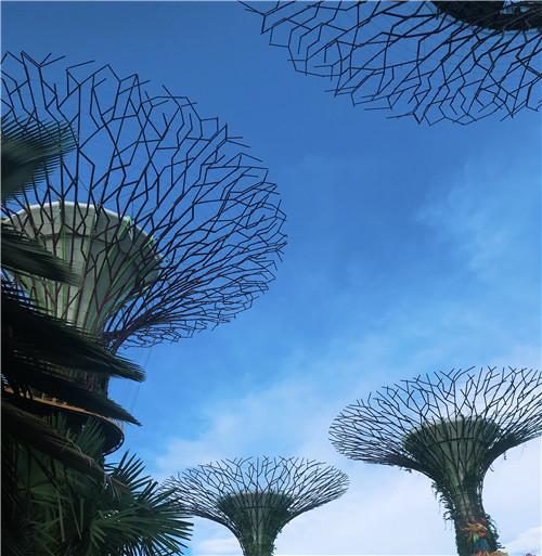 新加坡留学一年费用详解,赶紧收藏